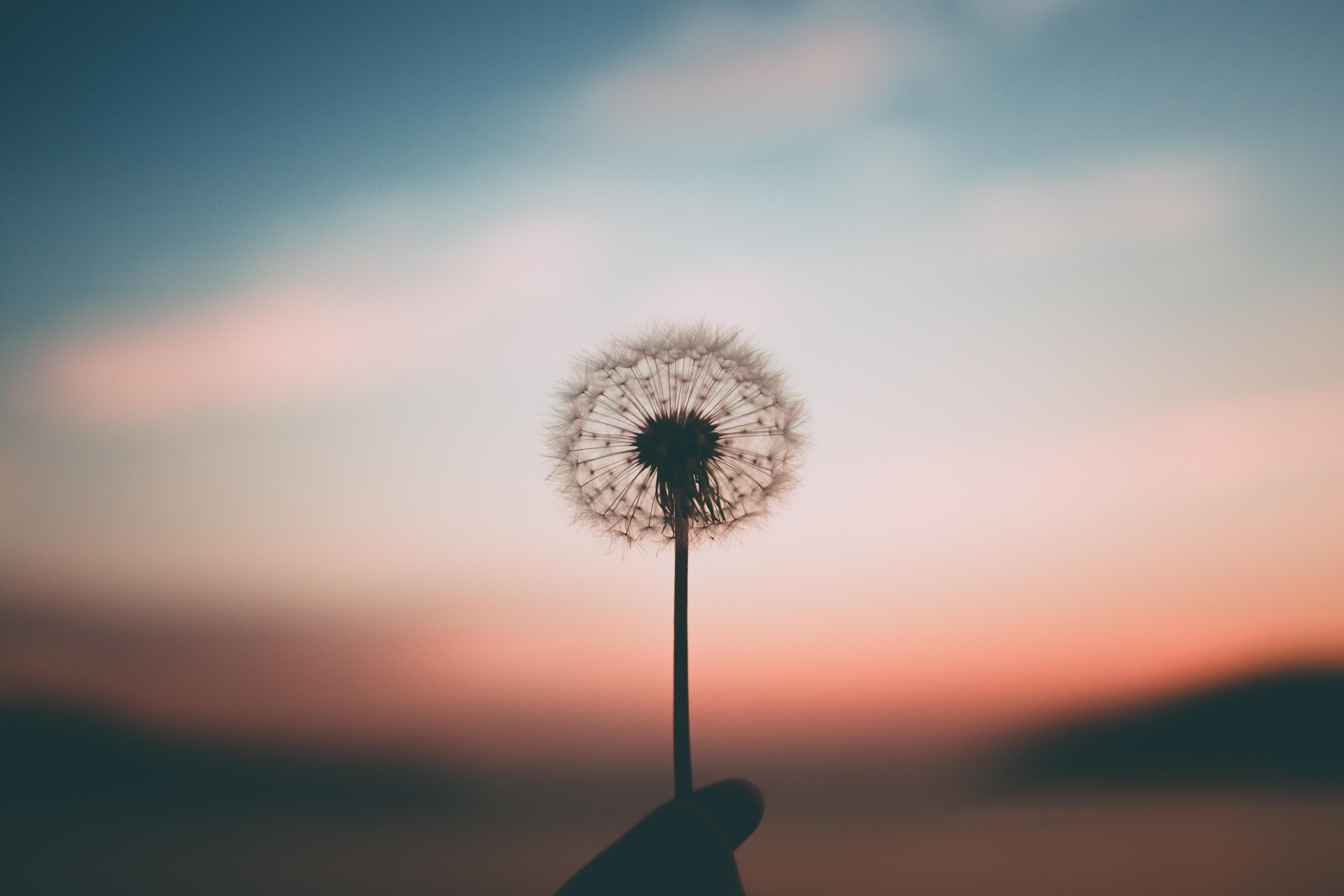 Φροντίζοντας τον εαυτό: από την αυτοφροντίδα στις σχέσεις φροντίδας